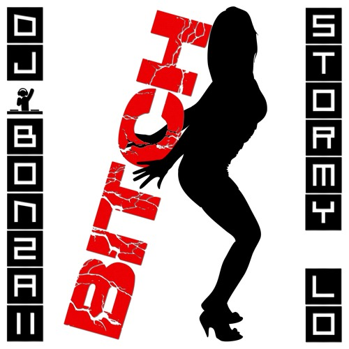 DJ Bonzaii & Stormy Lo - Bitch (Radio Edit)