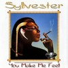 Sylvester, You Make Me Feel -  With a Twist - nebottoben