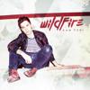 Wildfire - Sam Tsui