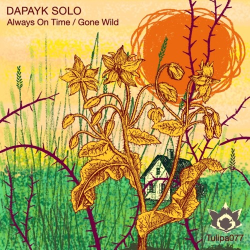 Dapayk Solo - Always On Time Feat.Camara
