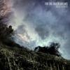 For the Fallen Dreams - The Big Empty