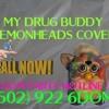 My Drug Buddy (Lemonheads Cover)