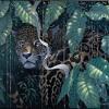 Dj Kibo - Rumble in the Jungle (Full)