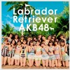 AKB48 - Labrador Retriever (cover)