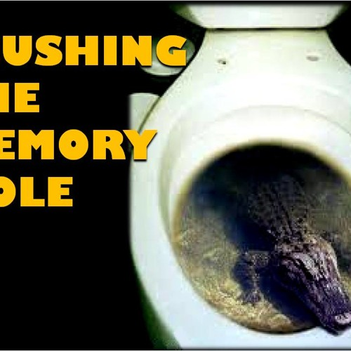 'Flushing The Memory Hole' - June 24, 2014