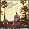 Hotel California (reggae cover)
