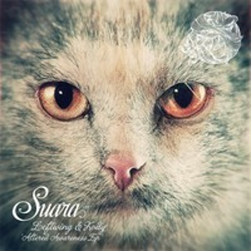 Leftwing & Kody - Holographic Universe - Suara - Out Now