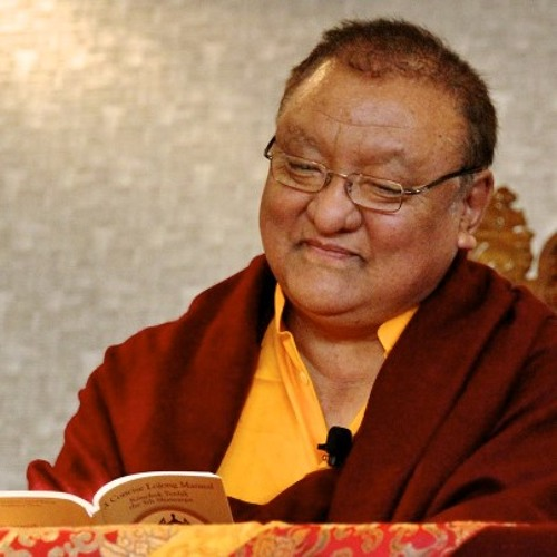 Shamar Rinpoche teaches on The Seven Points of Mind Training