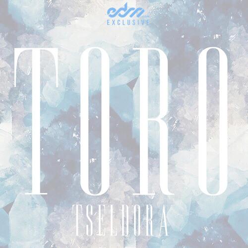 Toro - Tseldora [EDM.com Exclusive]