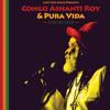 Congo Ashanti Roy & Pura Vida - I&I Praise Far I [Lost Ark Music 2014]