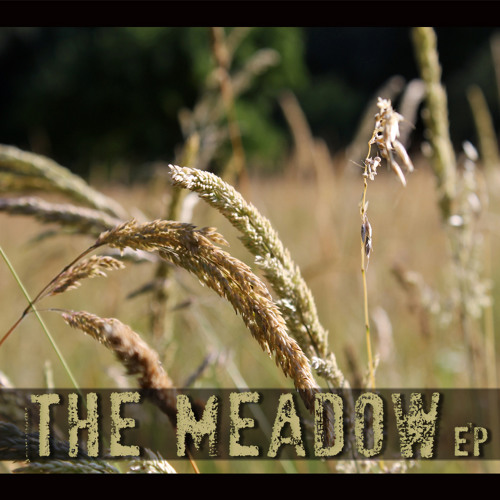 The Meadow pt.2: Storm