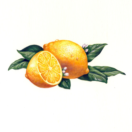 CocoRosie - Lemonade (hasa edit)