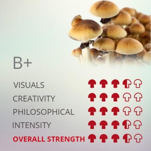 Broke8ball ॐ  - B+ (:be positive:)