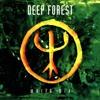 Deep Forest - World Mix - 4 - Night Bird
