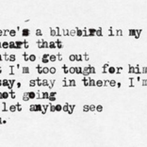 Bluebird, narrated by Jana Bakunina