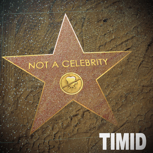Timid - Not A Celebrity