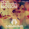 FRCH & David Estebal - Blossom (Original Mix)