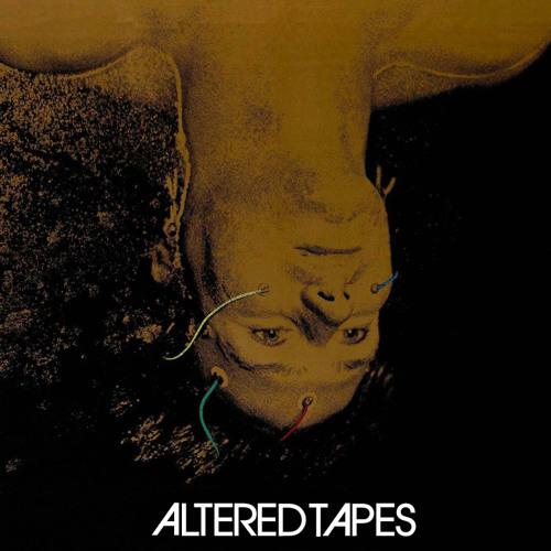 Altered Tapes at Taste of Randolph (June 2014)
