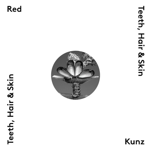 red-kunz-four-good-reasons