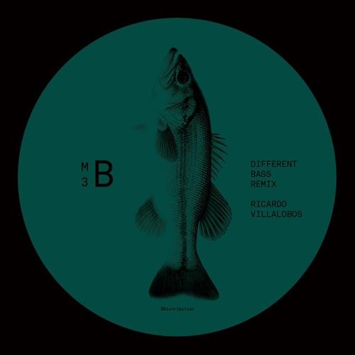 MELISMA VINYL 3 b Different  Bass Ricardo Villalobos REMIX 90s