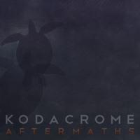 Kodacrome White Love Artwork