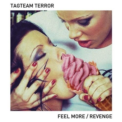Tagteam Terror - Feel More (Go Go Bizkitt! Remix)