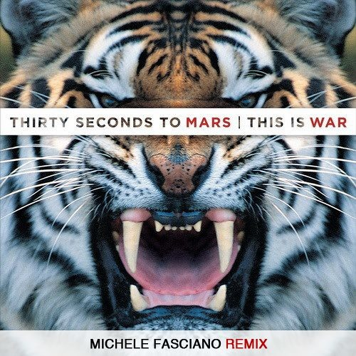 Thirty Seconds To Mars - This Is War (Michele Fasciano Remix)