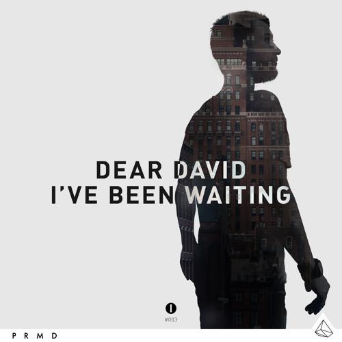 Dear David - I've Been Waiting (Original Mix)