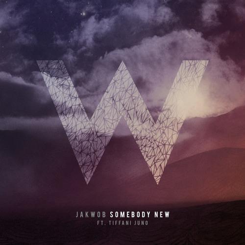 Jakwob_Somebody New (Rektchordz Remix)