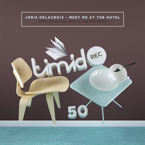 Joris Delcroix - Meet Me At The Hotel (Van Did Remix) [Timid Rec.]