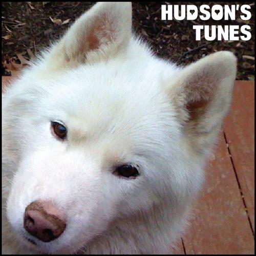 Hudson's Tunes
