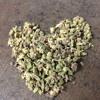 Love Is A Drug (Vine Version)