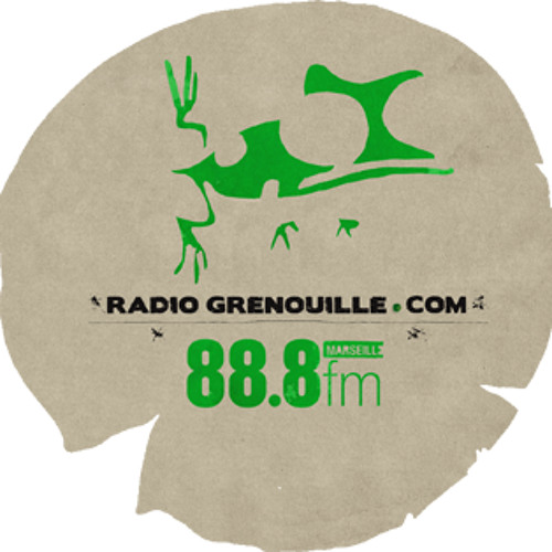 CVStreet sur Radio Grenouille - Plug In - 02/07/2014