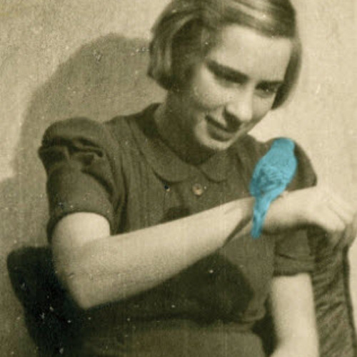 Mor i Auschwitz