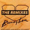 Jesus Loves Electro - Burning Love (MeGMoG Remix)