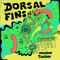 Dorsal Fins - Monday Tuesday