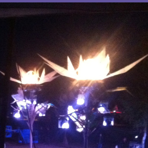 Soukie & Windish - Fusion Festival 2014 @ Tanzwüste