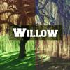 Willow - Jasmine Thompson (Dubeys Remix)
