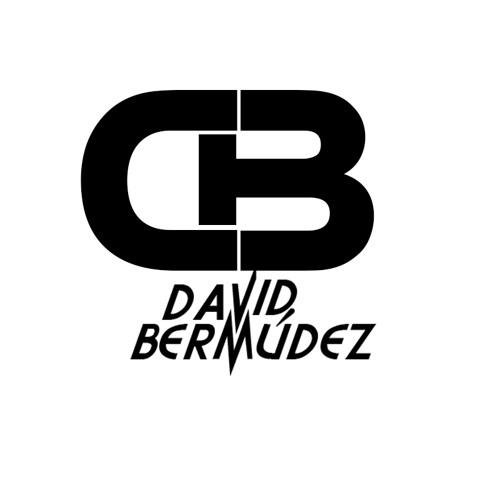 Yin Yang Bangers Vs Juan Alcaraz & Sane - Detonation Of The Iceberg (David Bermúdez Mash-up)