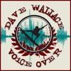 Dave Wallace Promo VO Demo