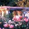 The Salley Garden (Three Irish Folk Songs, Voice& Flute. Corigliano). Tony Bittar and Fiona Ferguson