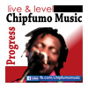 Progress Chipfumo June 2014 single Tokwe Mukorsi