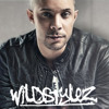 Wildstylez Ft. Noah Jacobs – Falling To Forever (Dance Valley Anthem 2014) [Hard With Style Rip]