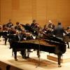 TCHAIKOVSKY - Concert Per A Piano Nº 1 - 1er Mov. Allegro Non Troppo - LLUÍS RODRÍGUEZ SALVÀ