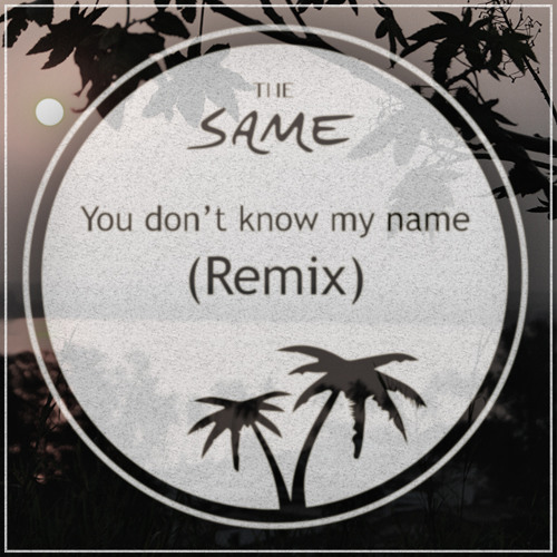 The SAME - You Don't Know My Name (Remix)