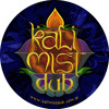 Involution by Kali Mist Dub