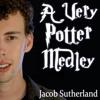 A Very Potter Medley