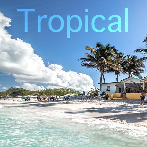 Tropical Community  (Tropical/Nu-Disco/Balearic/Deep House)