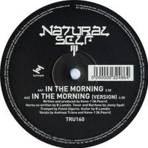On the morning  natural self (Saxman Remix )