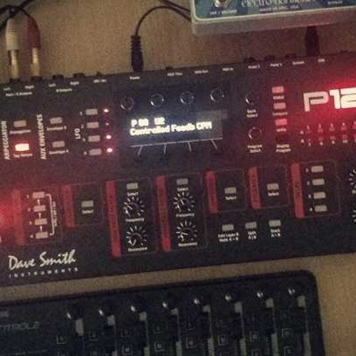DSI Prophet 12 Patches - BoBSwanS Demo